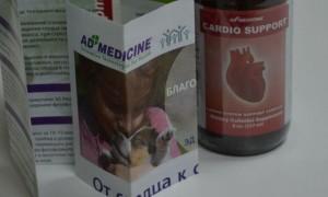 Рейтинг препаратов, содержащих калий и магний: самые эффективные средства