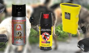 Какой выбрать отпугиватель для собак: защищаем себя и близких от дворовых собак