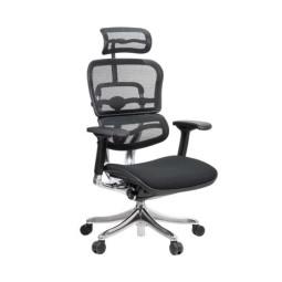 Comfort Seating Ergohuman Plus