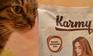 Лучшие корма для кастрированных котов и стерилизованных кошек в 2020 году